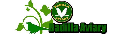 Badialla Aviary